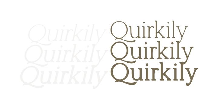 Quirkily衬线排版文艺logo好看的英文字体下载