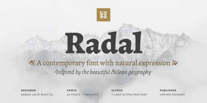 Radal现代logo名片排版平面设计英文字体下载