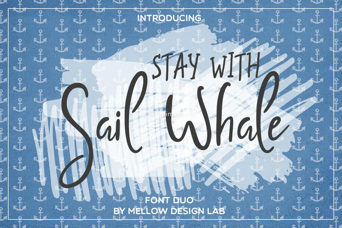 SailWhale手写好看的装饰性英文字体下载
