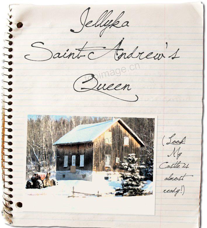 SaintAndrewsQueen钢笔手写笔记签名英文字体下载