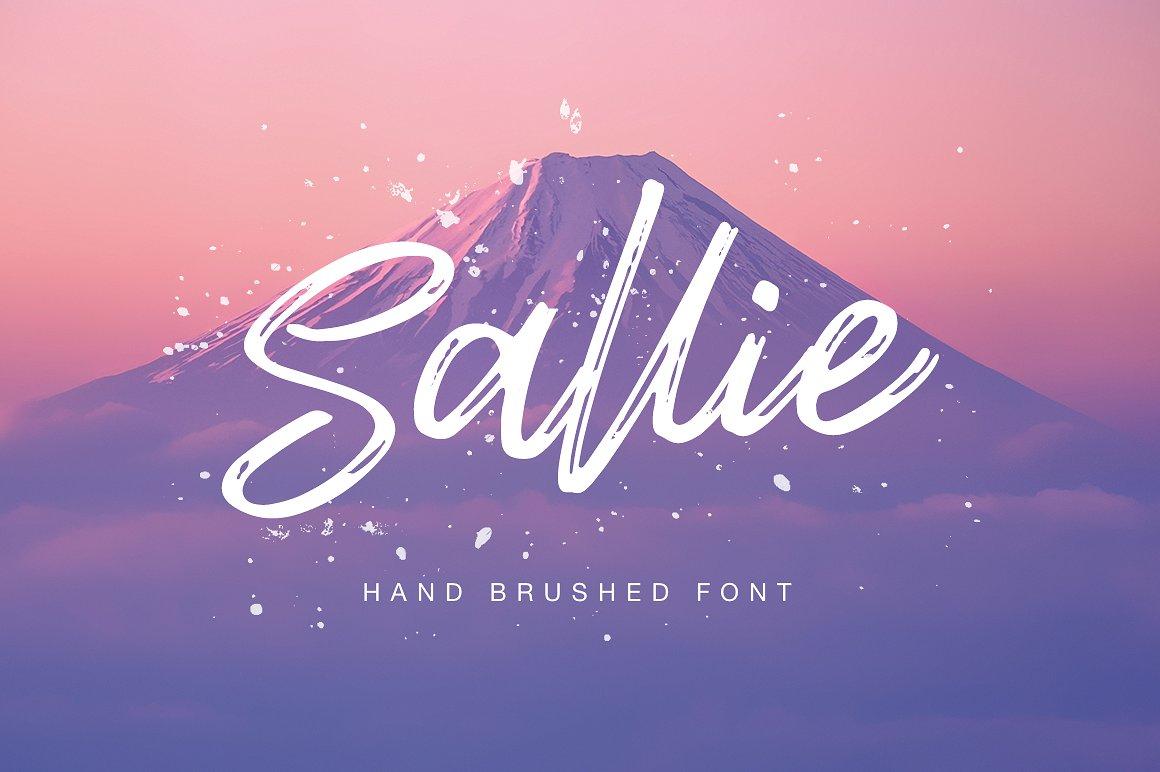 Sallie笔刷肌理手写连笔海报英文字体下载