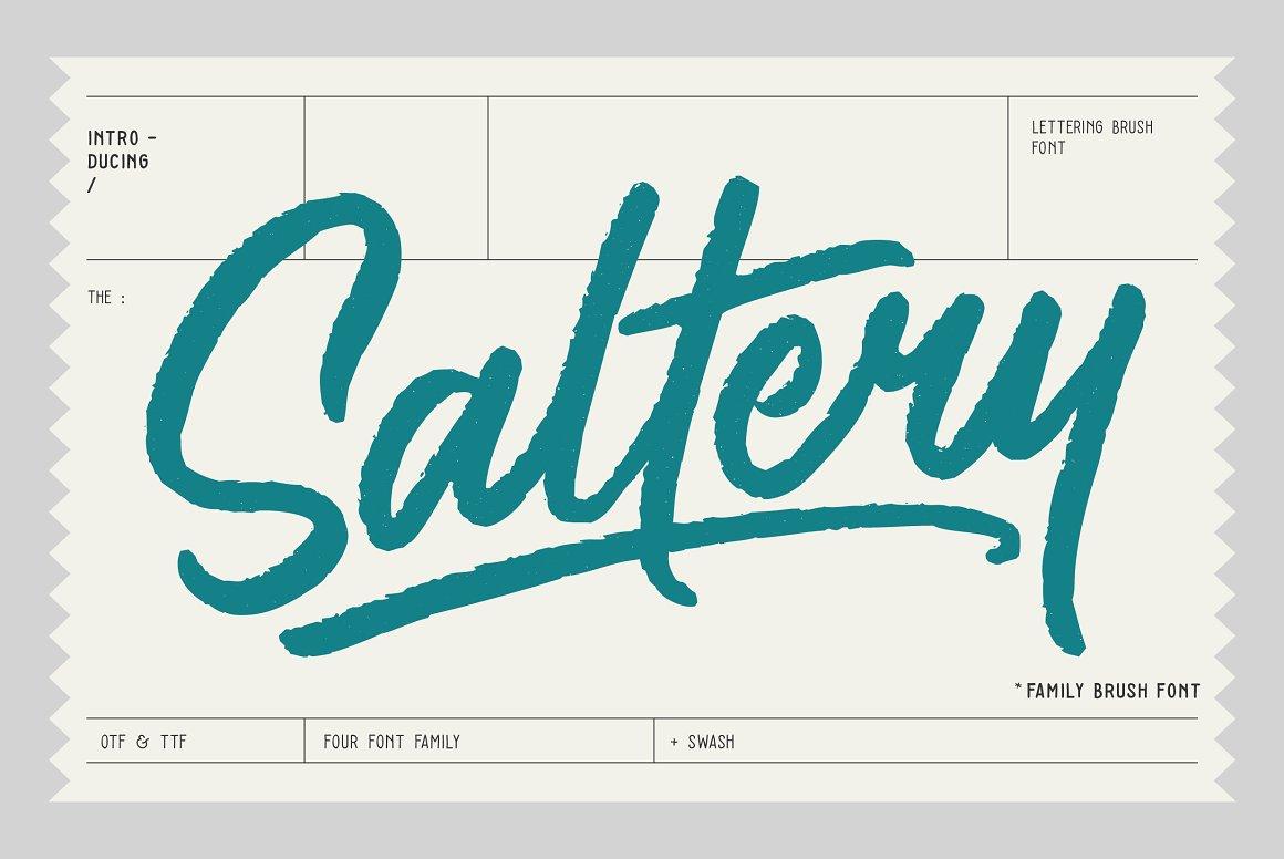 Saltery手写笔刷连笔海报英文字体下载