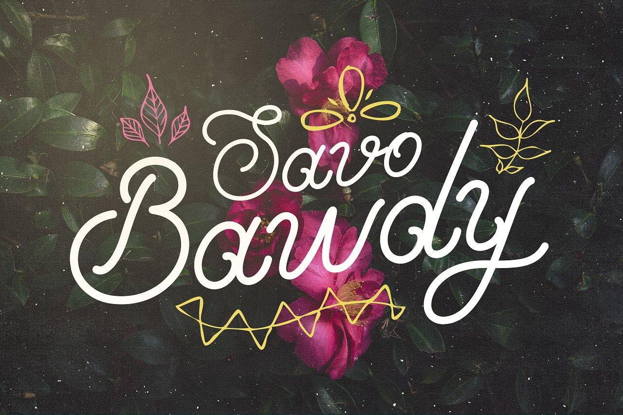 SavoBawdy梦幻手绘婚纱海报花式英文字体下载