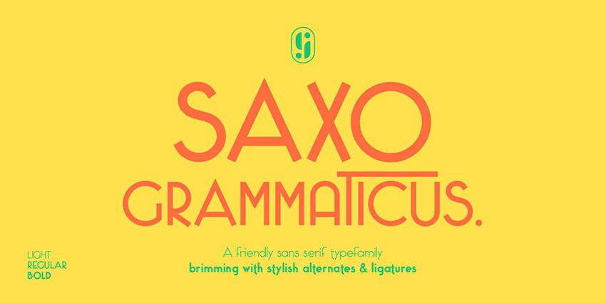 Saxo Grammaticus现代无衬线科技公司logo英文字体下载