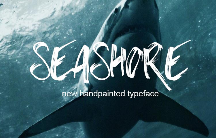 Seashore手绘笔触高端海报英文字体下载
