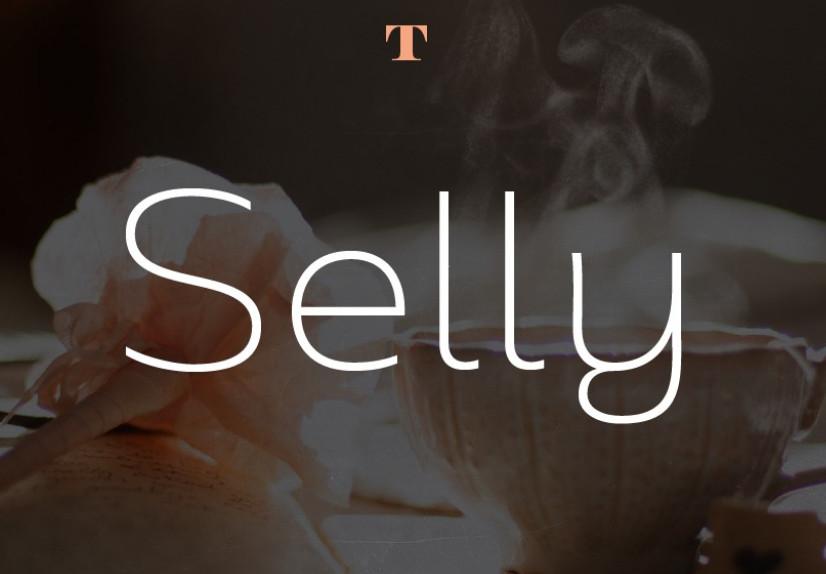Selly现代时尚简约logo英文字体下载