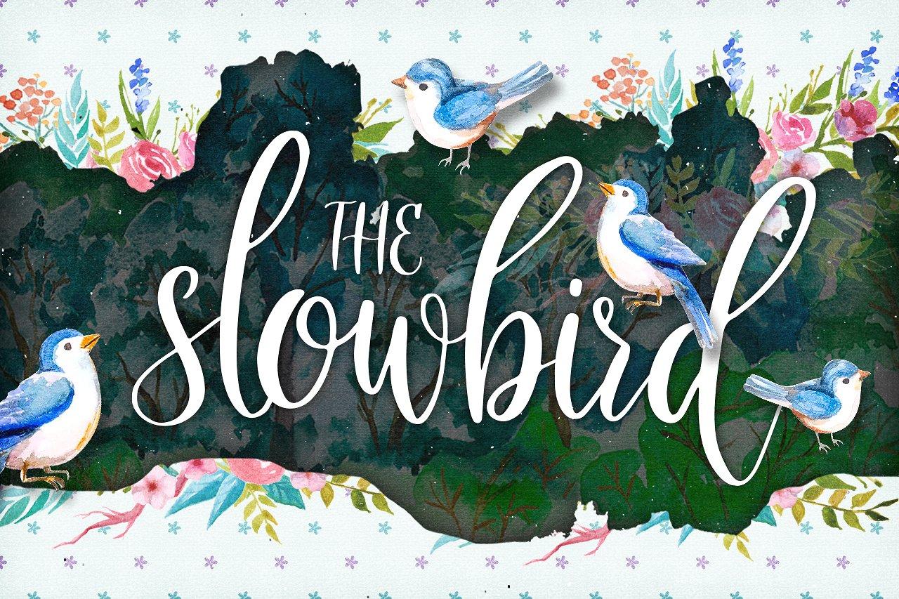 Slowbird手绘手写装饰海报英文字体下载