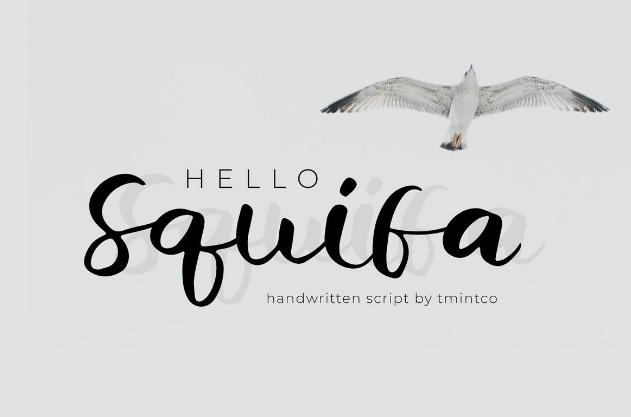Squifa连笔英文手写字体下载