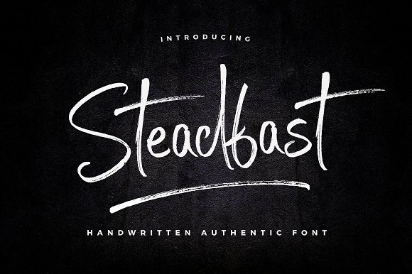 Steadfast书法笔触个性主流海报英文字体下载