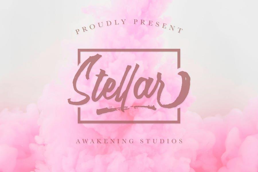 Stellar唯美手写婚礼logo设计英文字体下载