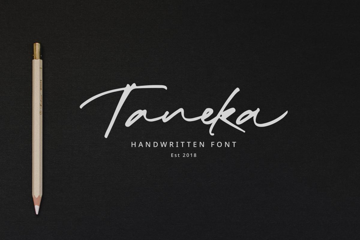 Taneka名片卡片手写连笔时尚英文字体下载
