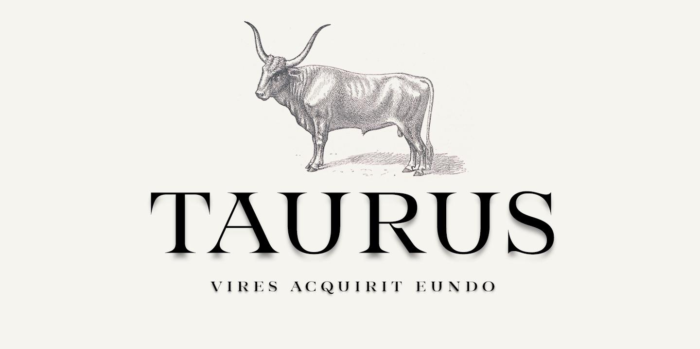 Taurus衬线设计经典时尚logo英文字体下载