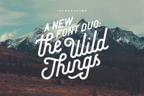 The Wild Things手写连笔圆润花体好看的英文字体下载
