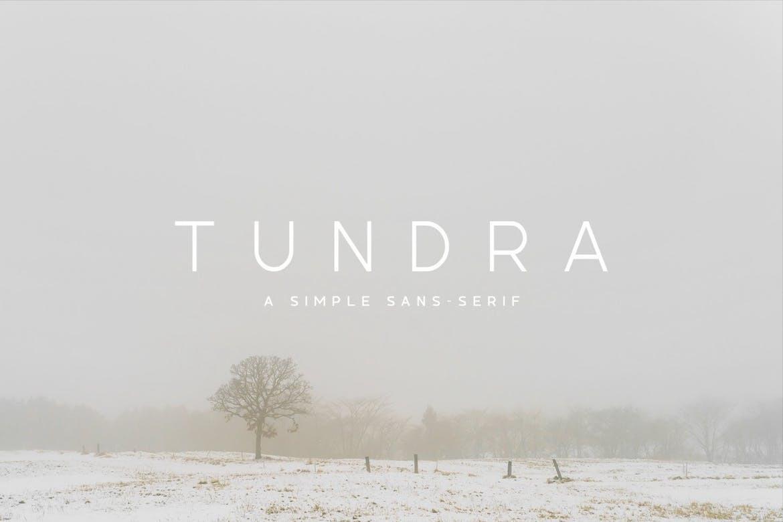 Tundra无衬线简洁logo现代英文字体下载