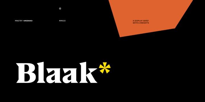 US Blaak 现代衬线名片英文字体下载