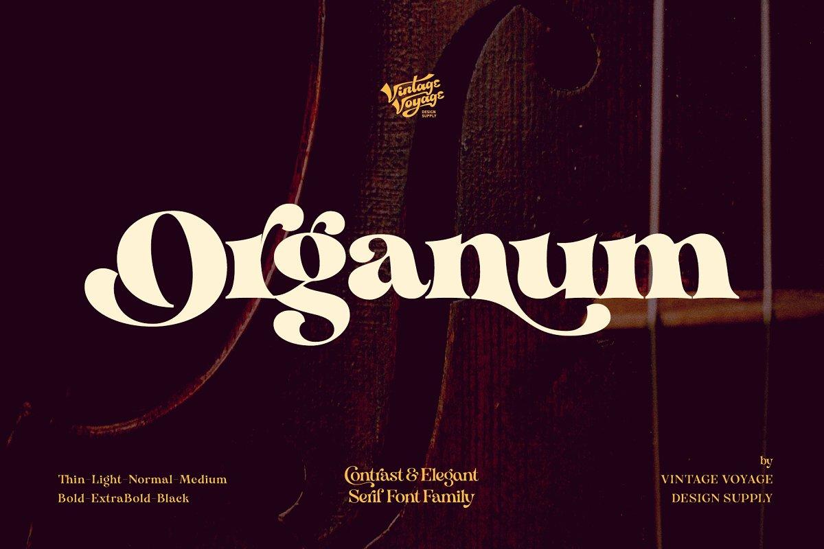 VVDS Organum个性衬线连笔老式英文字体下载