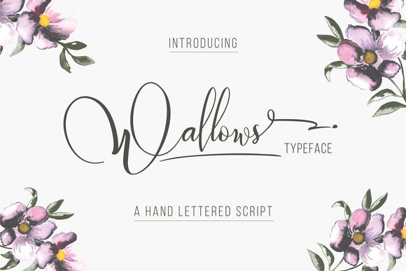 Wallows手写签名文艺英文字体下载