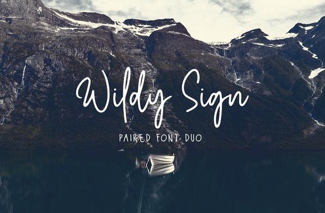 Wildy Sign随意手写连笔英文字体下载