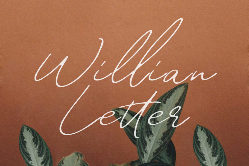 William Letter手写时尚连笔文艺英文字体下载