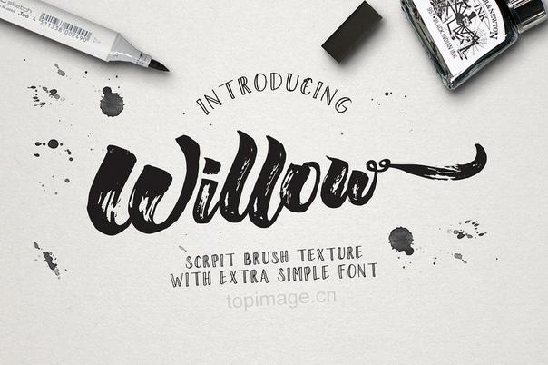 Willow水墨喷溅书法笔触英文字体下载