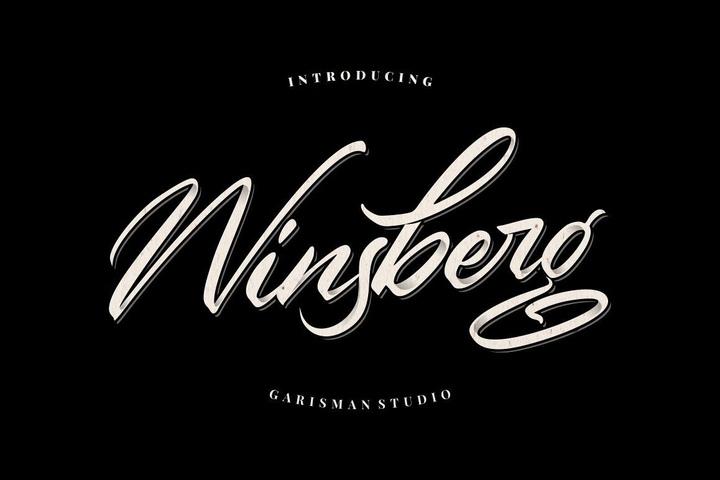 Winsberg手写连笔大气好看的英文字体下载