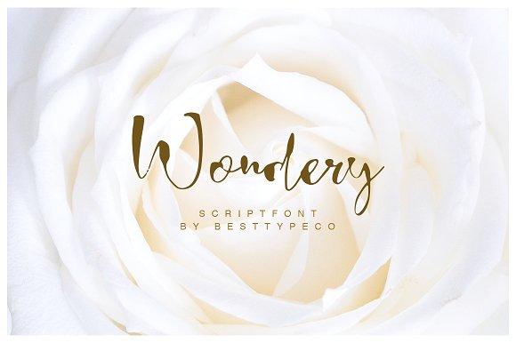 Wondery婚纱摄影海报手写浪漫英文字体下载