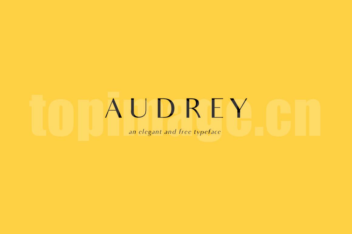 audrey简约现代时尚创意海报英文字体下载