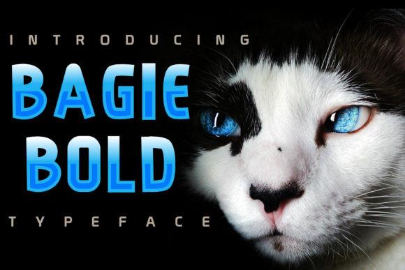 Bagie Bold现代无衬线英文字体下载