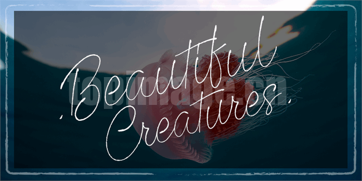 Beautiful Creatures手写手绘连笔飘逸纤细海报英文艺术字体下载