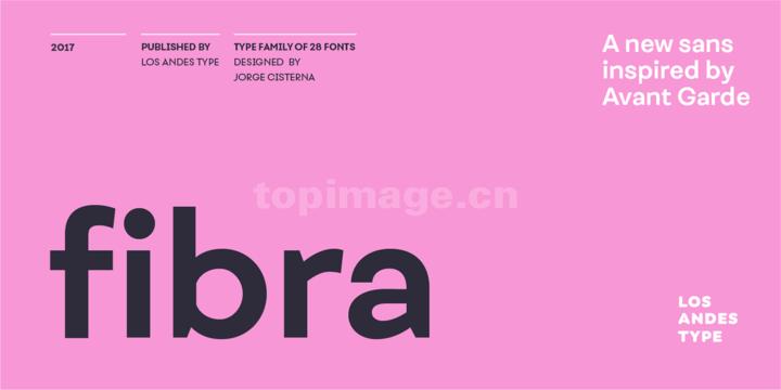 Fibra时尚简约海报现代英文字体下载