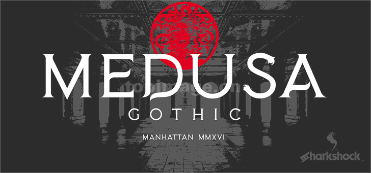 medusa-gothic复古简约衬线个性海报英文字体下载