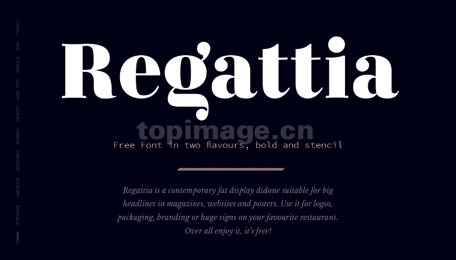 Regattia衬线复古罗马英文字体下载