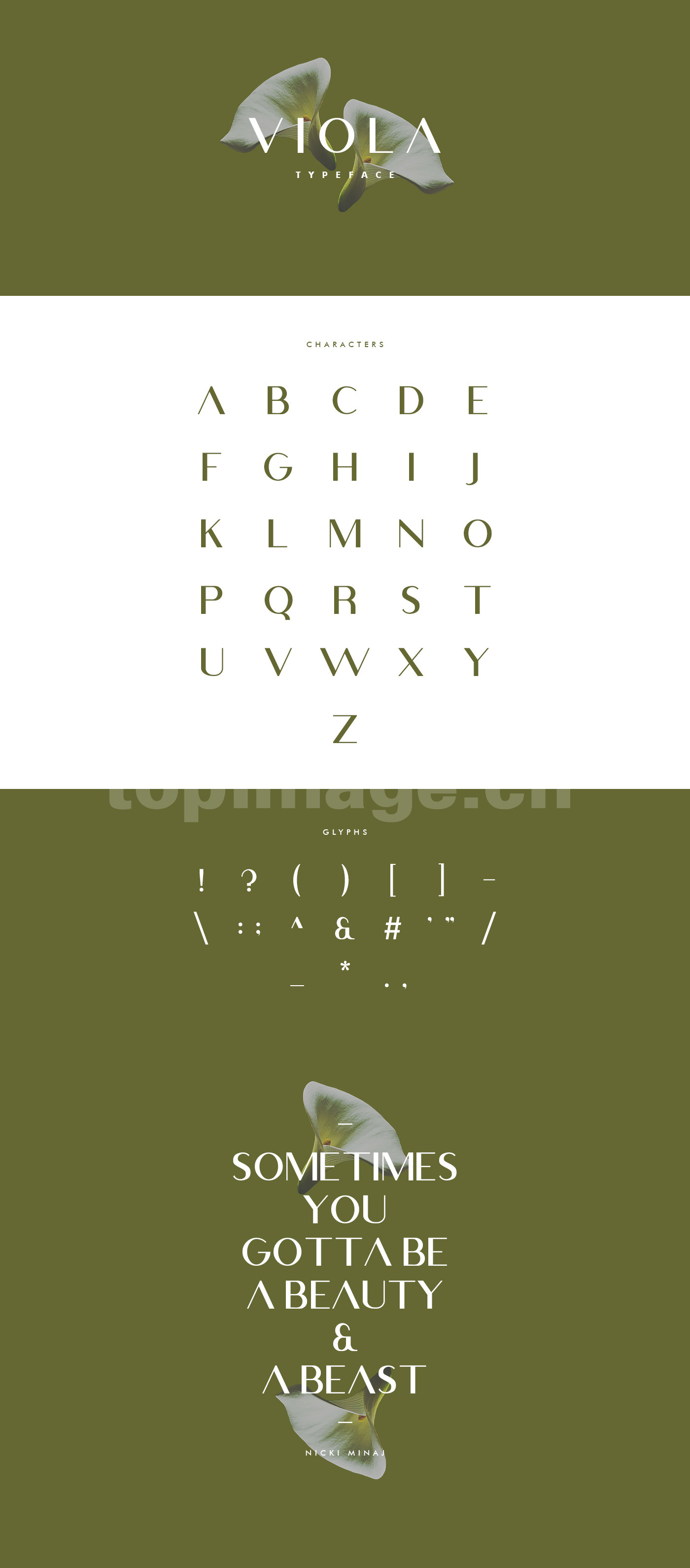 Viola时尚纤细简约海报英文字体适合logo下载