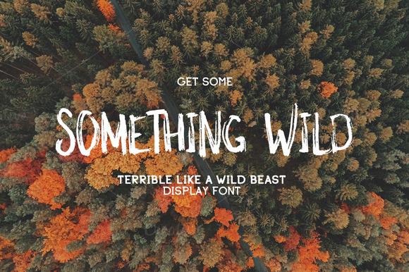 somethingwild个性笔刷肌理手写海报英文字体下载