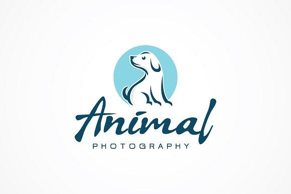 stya宠物海报logo手写英文字体下载
