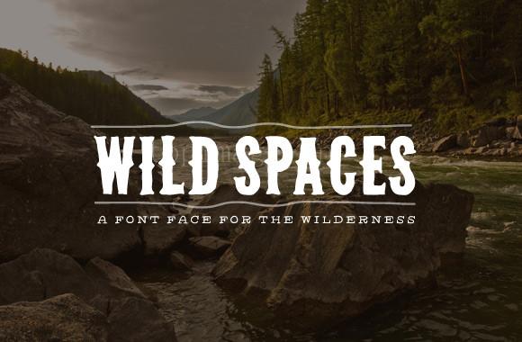 wild-spaces个性哥特式英文字体菱角下载