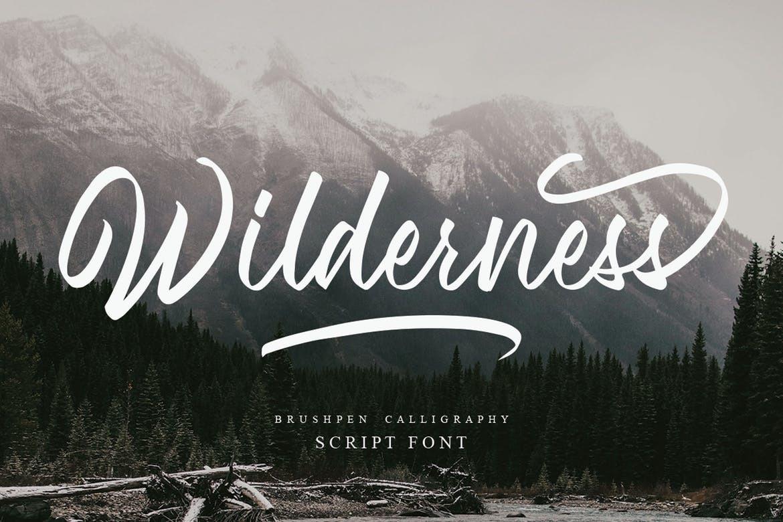 wilderness手写连笔大气英文字体下载